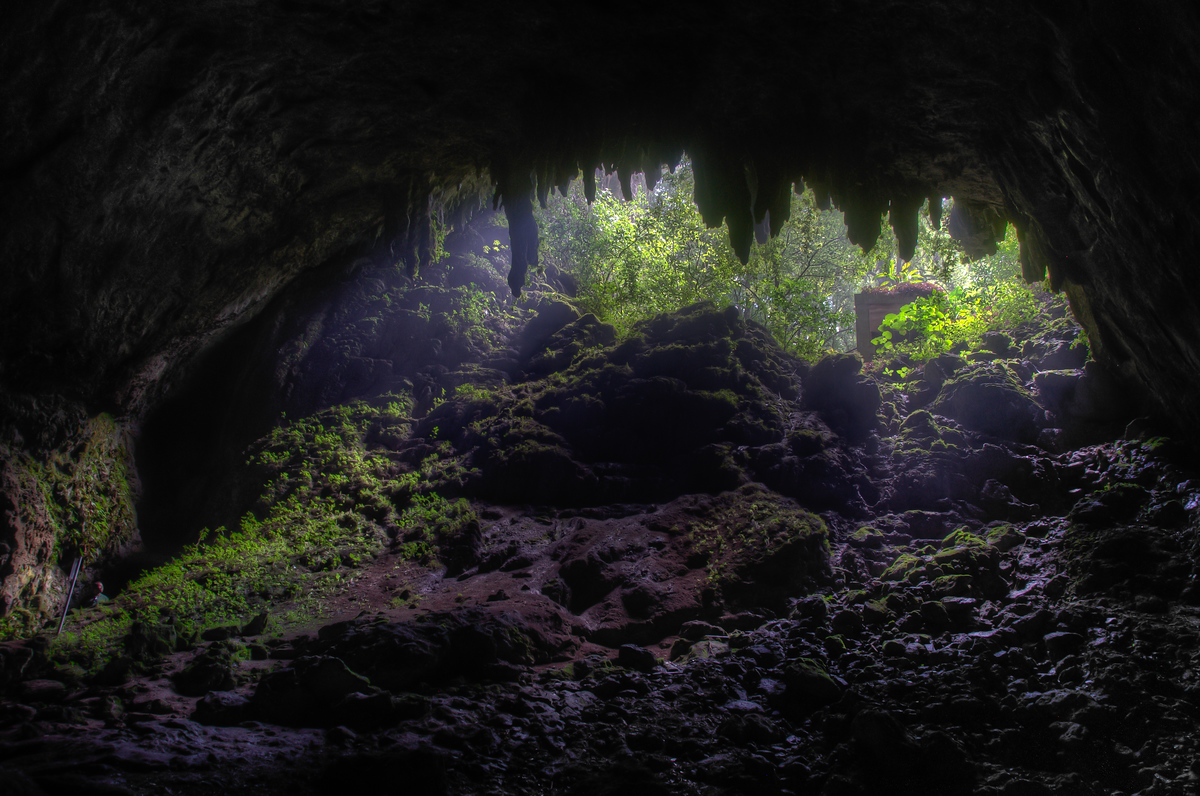 Inside the Camuy Caves of Puerto Rico