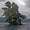 Solomon Islands : 1 gallery with 63 photos