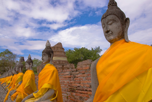 Row of Buddhas - Ayutthaya, Thailand